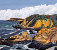 North from Bodega Head, 1993